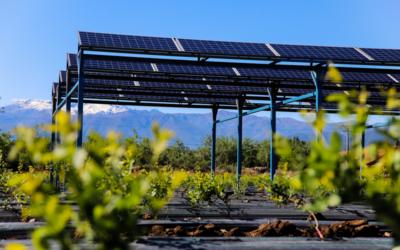 ¿Energía solar en la empresa? Sí, gracias